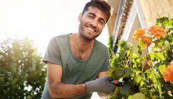 Se acerca el fin del verano, ¿qué significa esto para las empresas de jardinería y paisajismo?