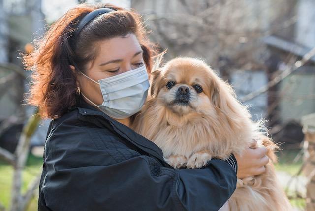 Mascotas también deben mantener distancia social para evitar el coronavirus