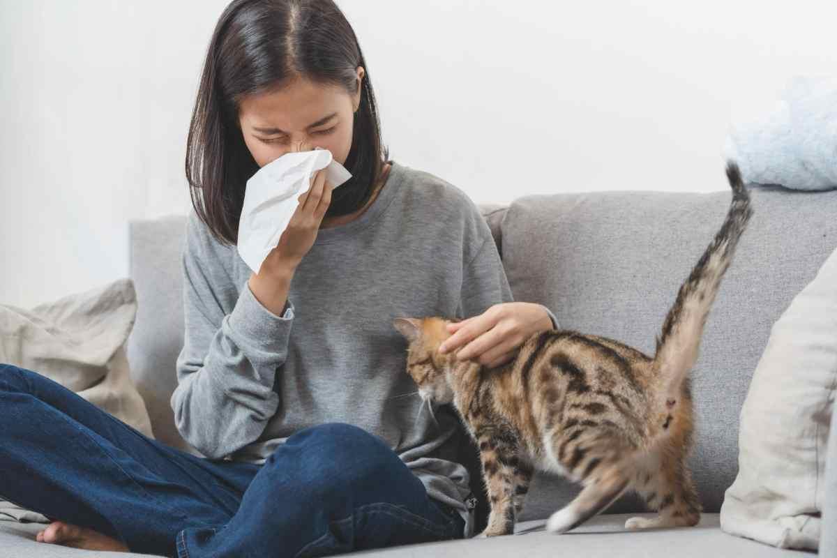 Esté alerta a estos alérgenos que viven dentro del hogar