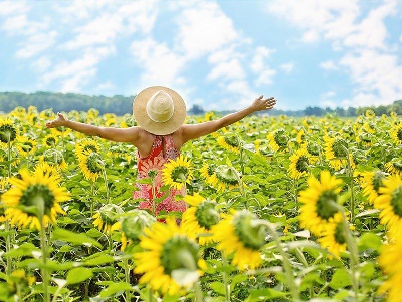 donde-y-como-encontrar-la-felicidad