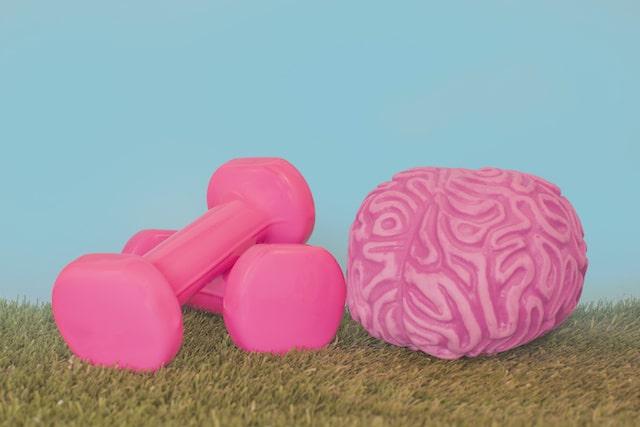 Gimnasia cerebral, la clave para una mejor memoria y concentración