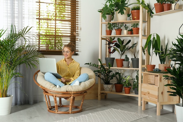 Mejores plantas para tener en casa, según la NASA