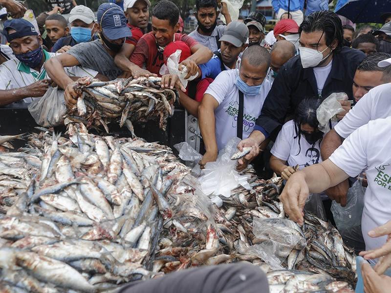 nueva-oposicion-venezolana-regala-sardinas-para-atraer-votantes