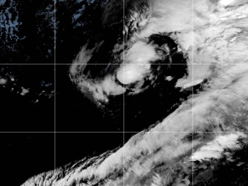 Tormenta subtropical Theta es la número 29 de la temporada
