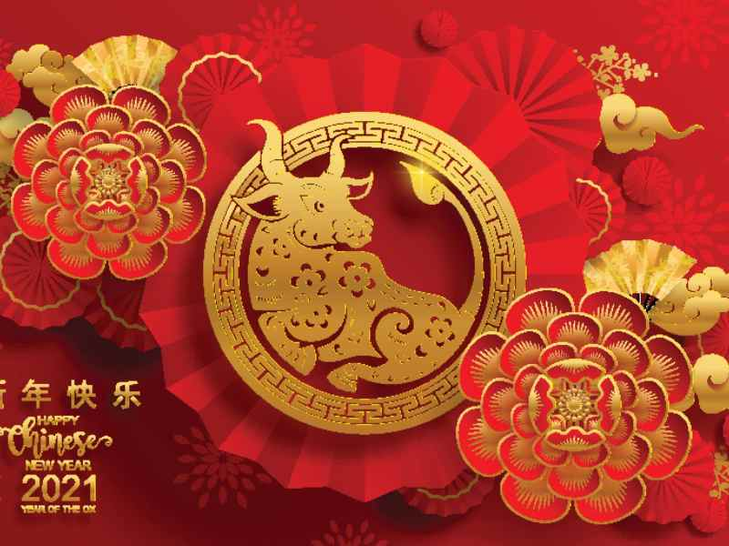 ano-chino-2021-sera-el-ano-del-buey-que-significa