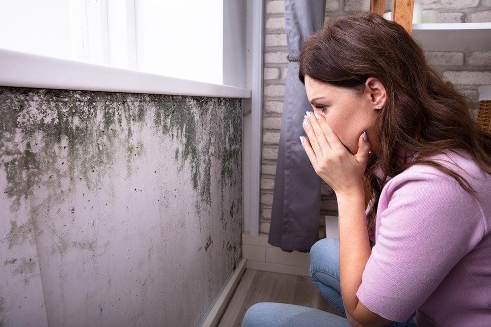 Alergias más comunes en Carolina del Norte: moho ¿Cuándo ocurre? ¿Qué hacer?