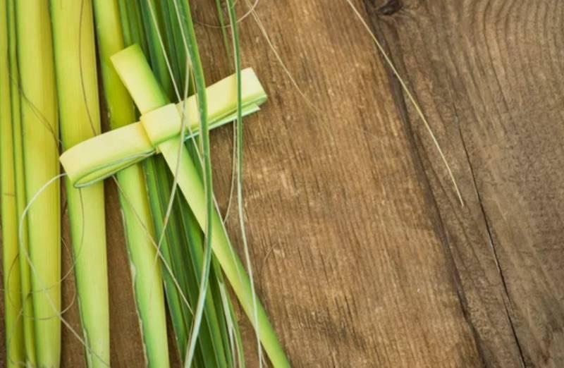 domingo-de-ramos-cual-es-el-significado-de-este-ritual-religioso