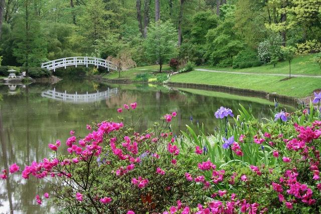 El jardín de Duke reabrirá al público el 1ro de junio