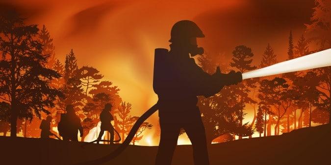 Peligro de incendio: el Servicio Forestal de Carolina del Norte envía una advertencia