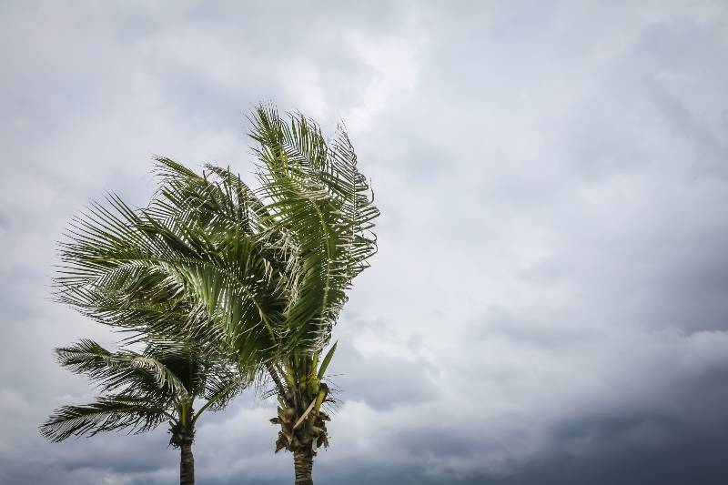 tormenta-tropical-andres-temporada-de-huracanes
