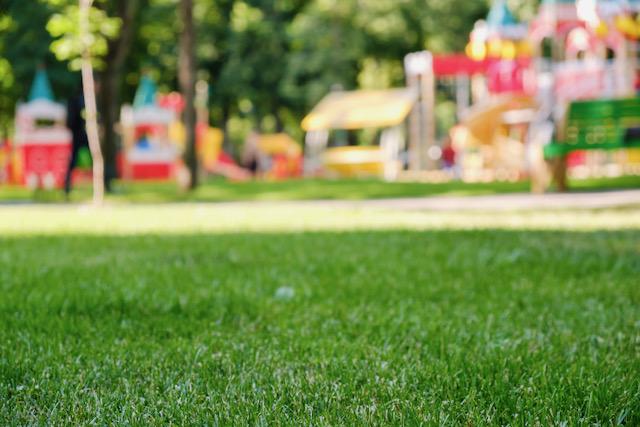 Actividades divertidas en parques de Greensboro en julio