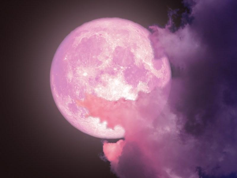 Luna de fresa ¿cuándo se podrá ver la última superluna del 2021?