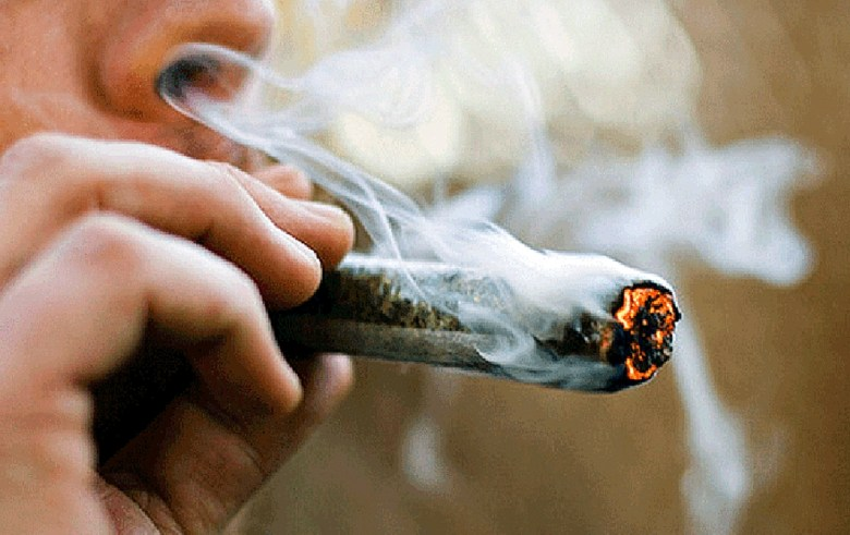 Senado Carolina del Norte marihuana