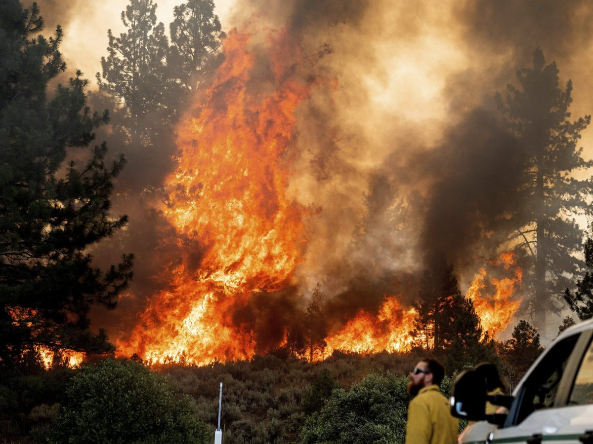 dixie fire california alerta