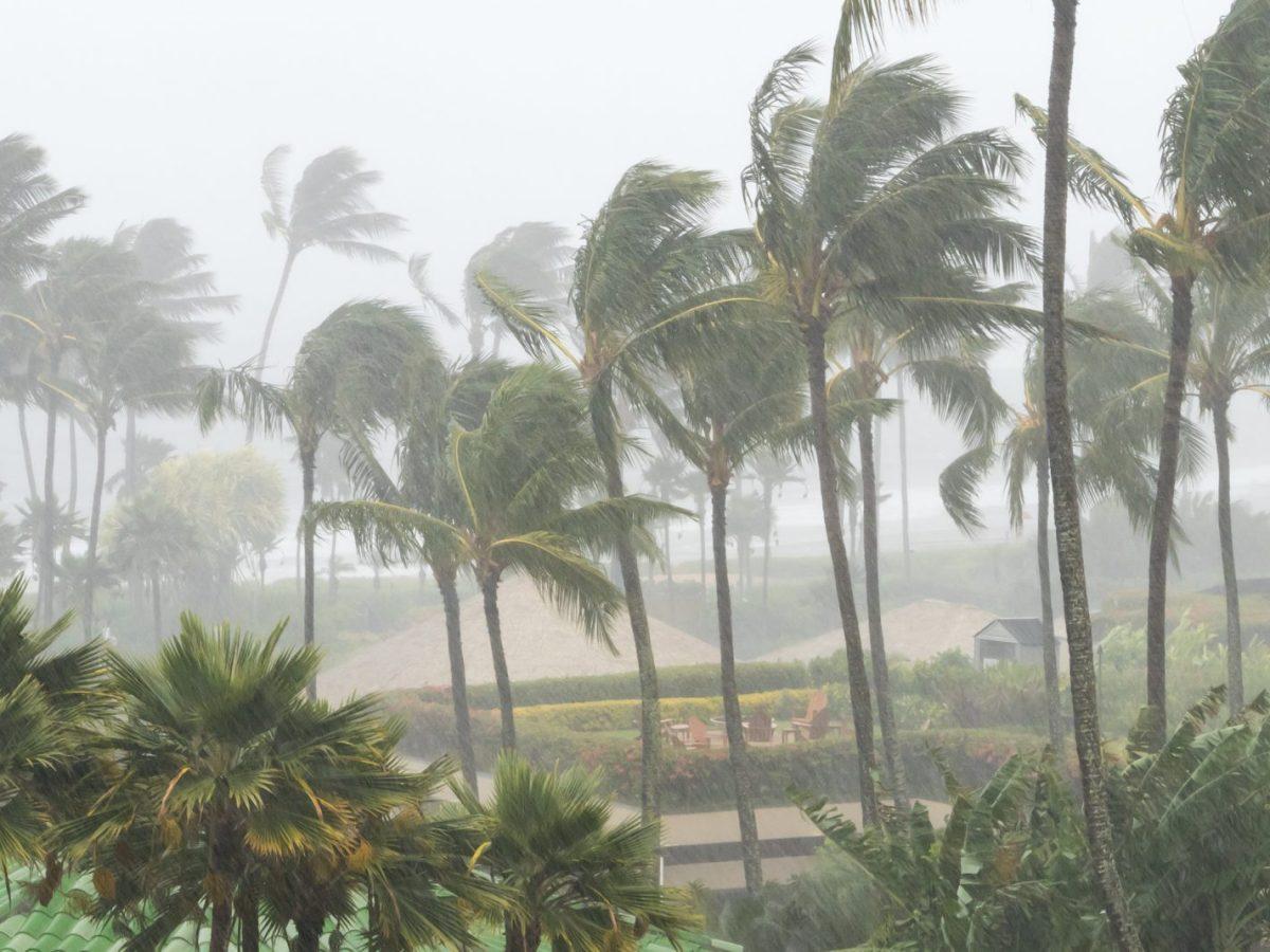 ciclón tropical Florida