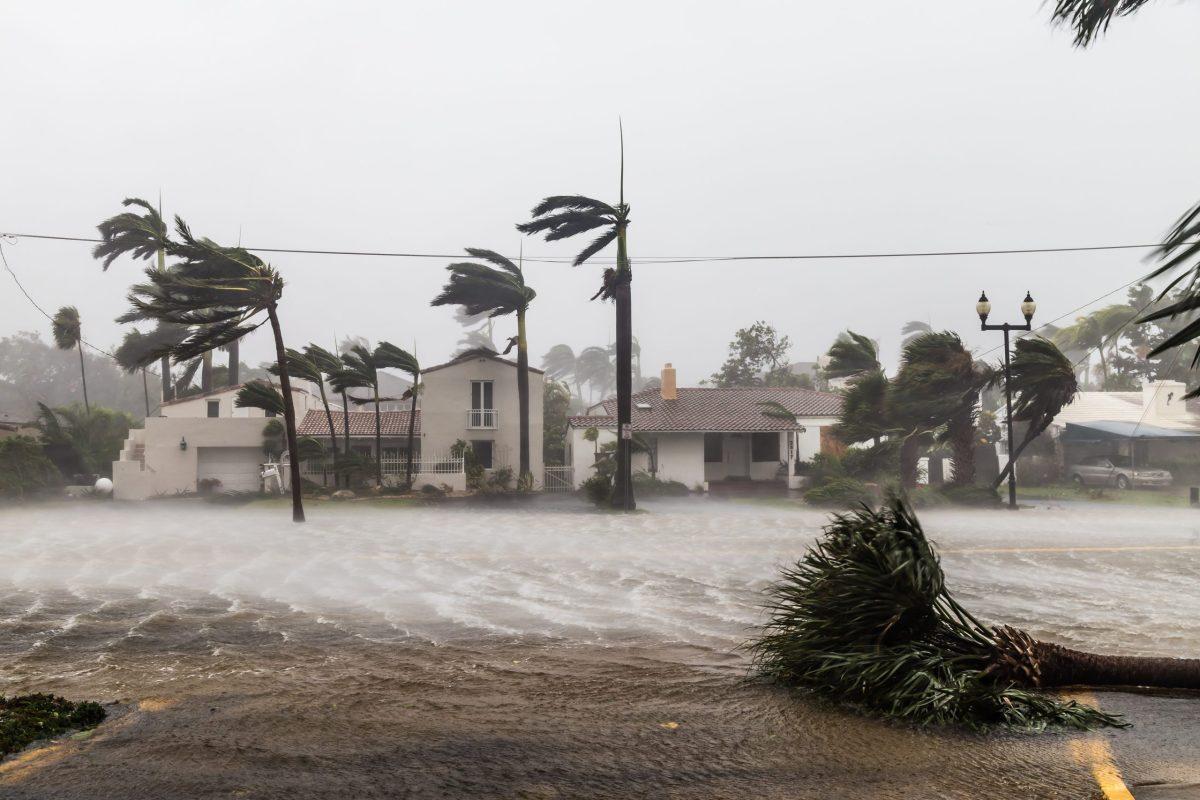 henri-sera-un-huracan-y-afectara-el-noreste-del-pais