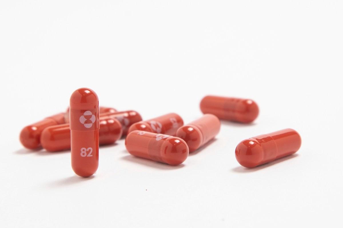 pastilla-anti-covid-evita-hospitalizacion-y-muerte