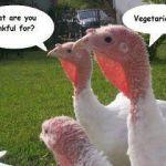 Thankful?