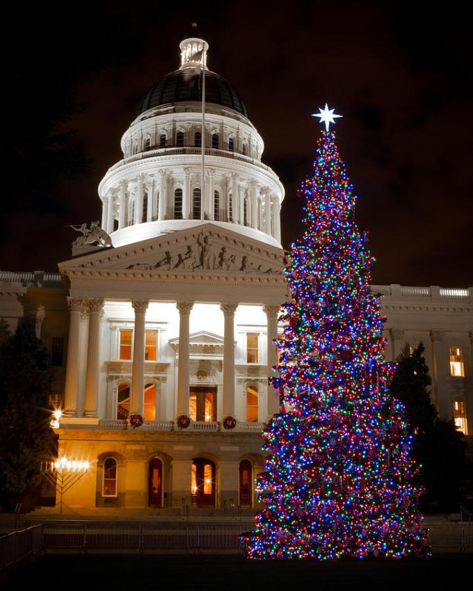 sacramento state capitol christmas tree lighting 2017