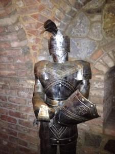 The Knight I Shined