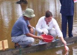 Penebaran perdana benih ikan emas bantuan korban Tsunami