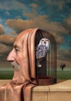 cabeza-de-hombre-es-jaula-con-buho-001