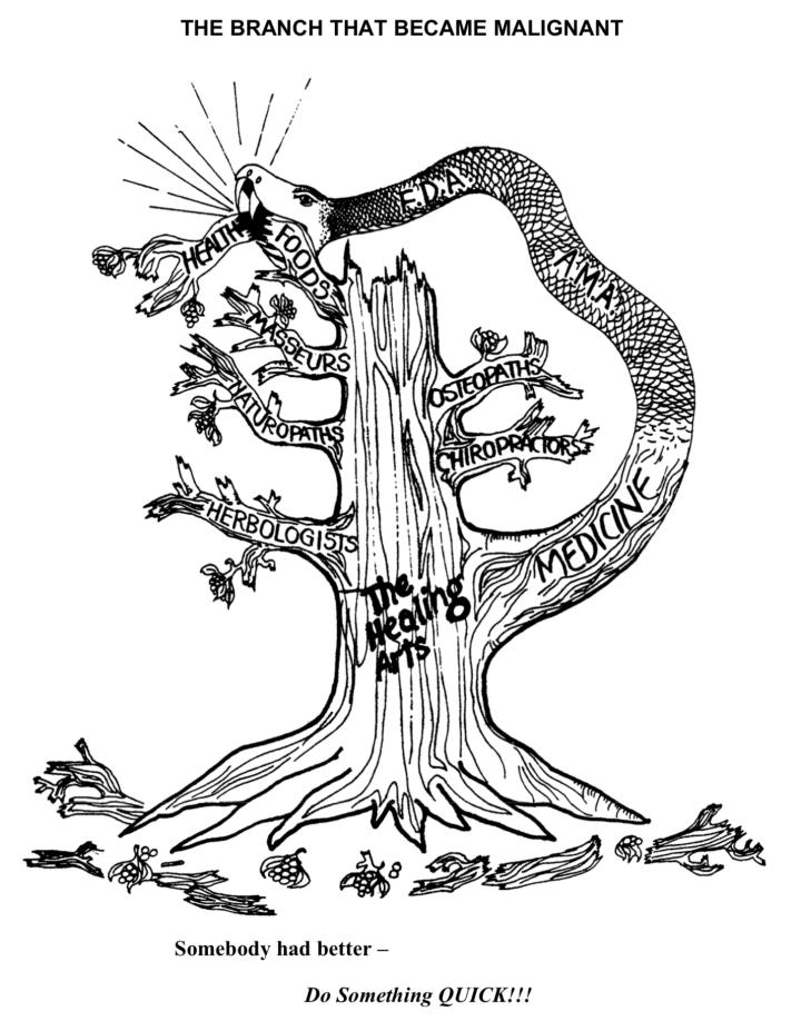 ERBALISMO E MEDICINA ANTICA – POSSIBILI CURE NATURALI – PARTE DUE