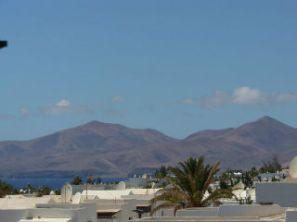 Las Palmeras View