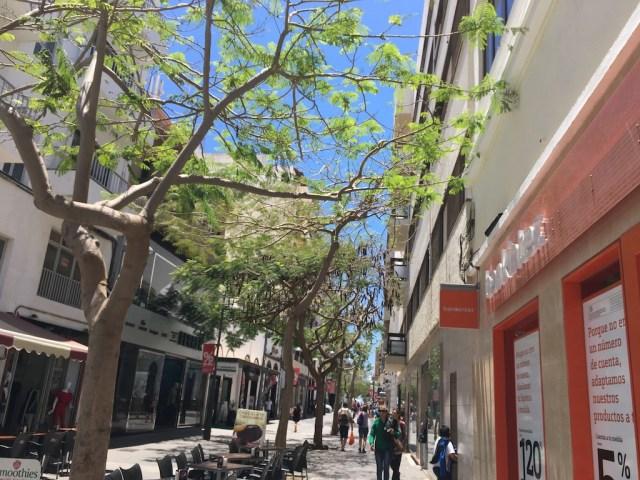Leon y Castillo Arrecife Lanzarote