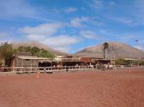 LanzaroteACaballo2