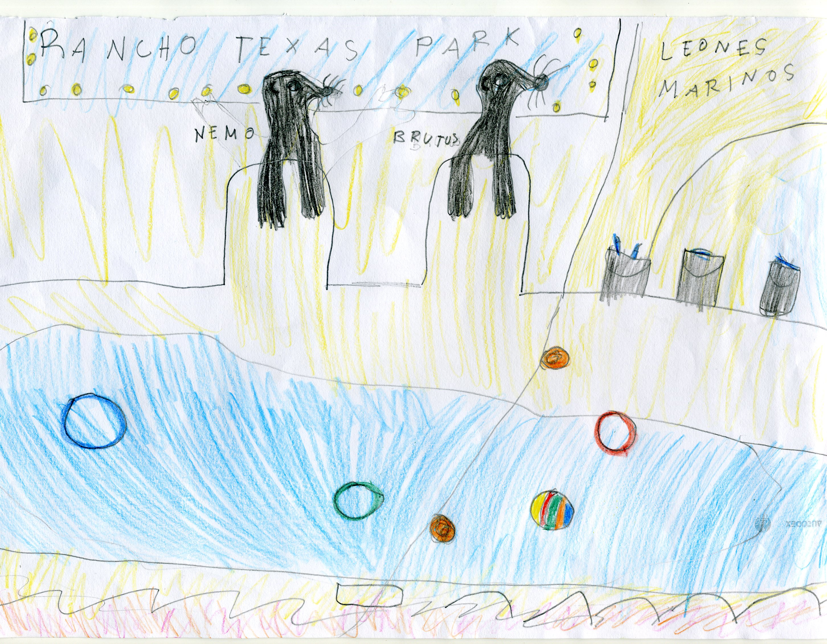 En la Isla de Lanzarote, cerca de la Casa Rural Finca de Uga... hice amigos, entre ellos Nemus y Brutus, simpaticos leones marinos una familia numerosa.