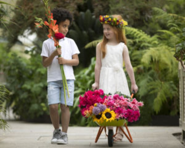Sun safety, gender inequality and understanding dementia are among the health and charity themes at Bord Bia's Bloom
