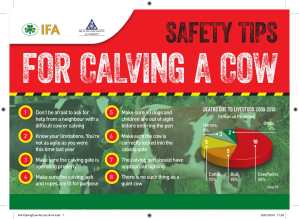 Farmers urged to be particularly vigilant during spring calving – IFA