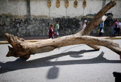 7 Lamentables daños contra el medio ambiente en Latinoamérica
