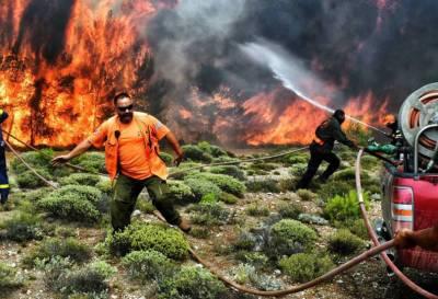 Los devastadores incendios en Grecia dejan 81 muertos y unos 200 heridos