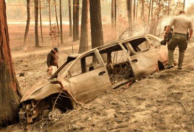 Cerca de 31 muertos y más de 100 desaparecidos por los incendios en California