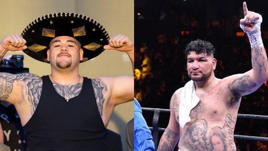 Andy Ruiz vs. Chris Arreola