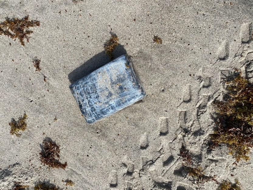 Cocaina 210519 X XI814 1002 - Especialista en vida silvestre buscaba nidos de tortugas y halló cocaína por valor de $1.2 millones en Florida