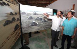 Para que la gente disfrute los beneficios de nuestra riqueza natural, en Quintana Roo protegemos y preservamos esa maravilla: Carlos Joaquín