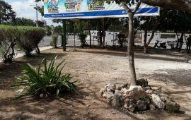 Limpia y habilita Gobierno de Solidaridad parques, puentes y vialidades