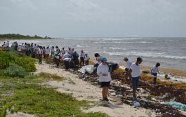 Limpian playas de Punta Sur, en Cozumel