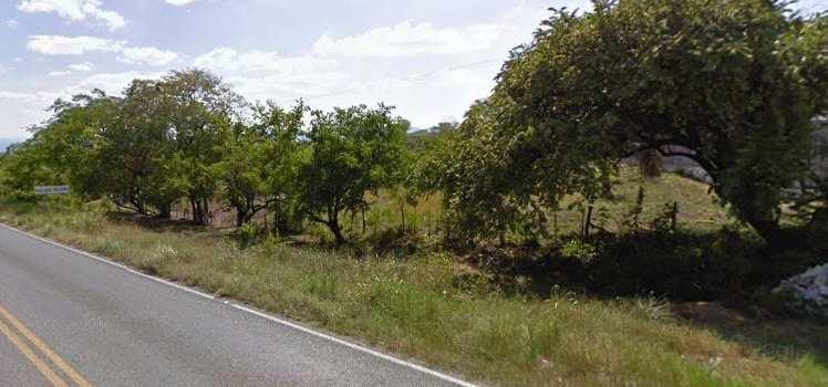 Tamuín