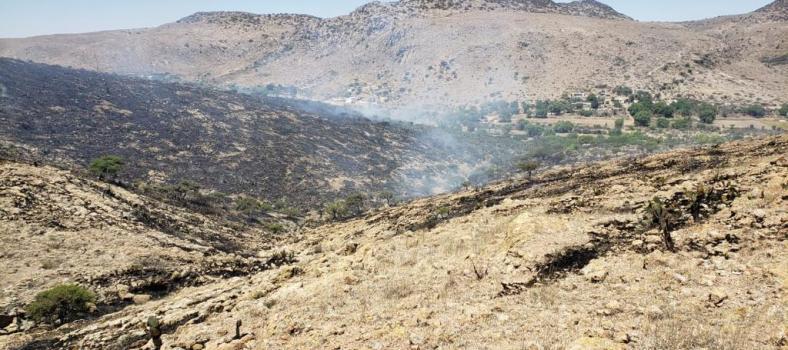 Incendio en Rioverde