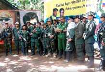 Video de las Farc