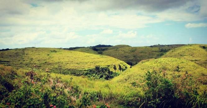 Bukit Teletubbies adalah salah satu dari 5 Spot Wisata Kekinian di Bali Utara Bikin Kamu Makin Keren di Instagram