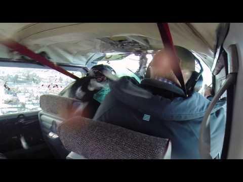 Kenapa Pilot Pesawat Terbang Takut Dengan Burung? Atau