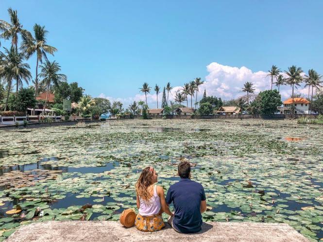 Lotus Lagoon