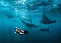 Aktifitas Wisata Nusa Lembongan Terbaik!