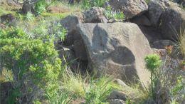 Prähistorische Funde