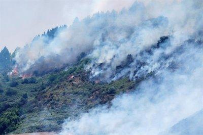 Waldbrand Gran Canaria
